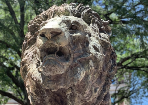 Lion statue on Columbia's campus